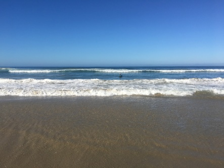 beach pull