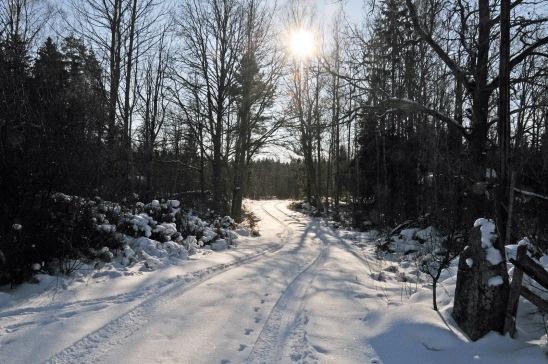 Road1_2012Feb