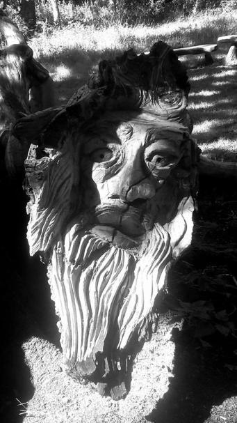 Yvonne Brewer tree pic Fiona Fox
