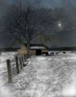 Clare's poem frosty night