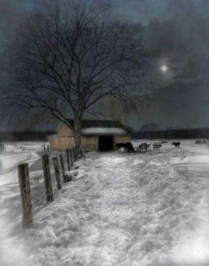 Clare's poem frosty night