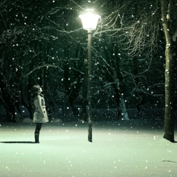Snowflakes blog 11-18