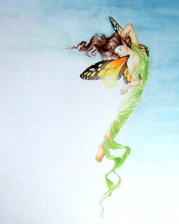 jan cocoon butterfly