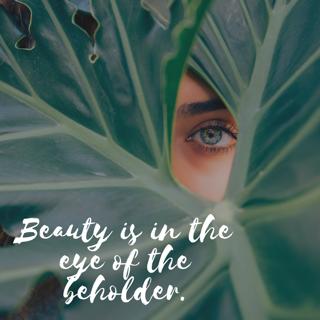 beauty in failure beauty in eye of beholder
