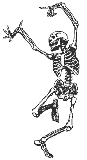 skeleton writer 3 skeleton_dancing