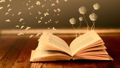 books imagination
