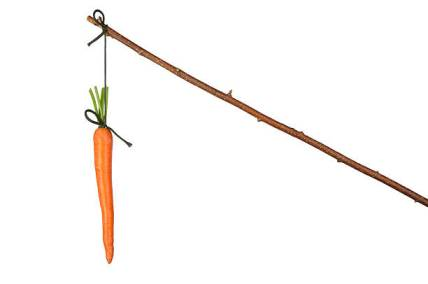 Fresh red carrot hanging on white background