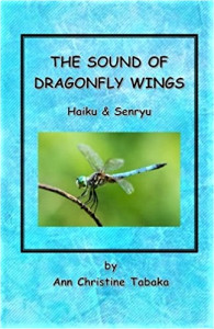 the-sound-of-dragonfly-wings-2