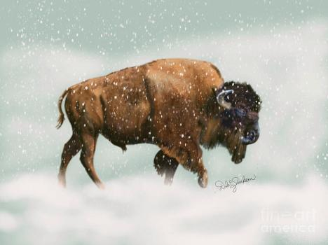 December Look Back Poetry 2019 bison-in-snow-storm-dale-evelyn-jackson