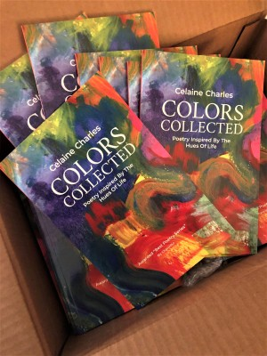 Color Books in Box E