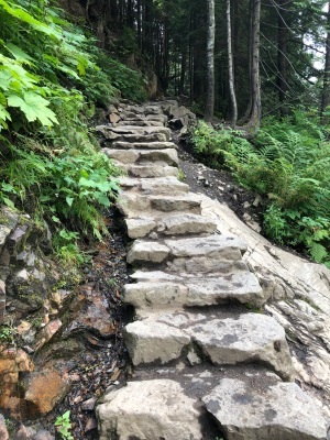 stairs rock path